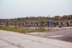 Подготовленные участки Нового Колпинского кладбища